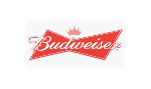 Donny Baarns The Millennial, Cool-Nerd, Guy-Next-Door Voice Budweiser Logo